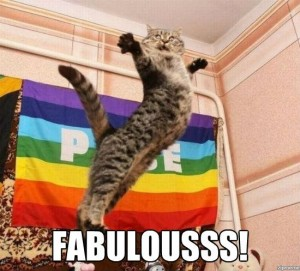 fabulous-cat-meme